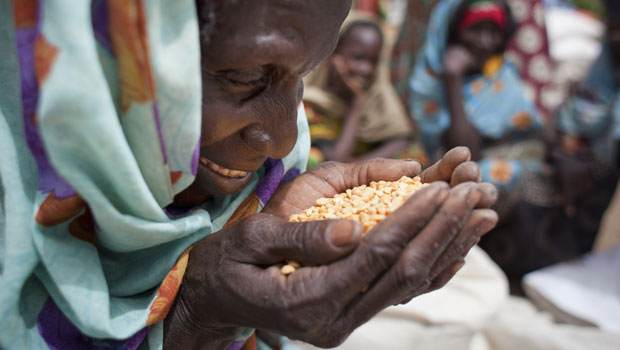Oxfam's food distribution, in Chad