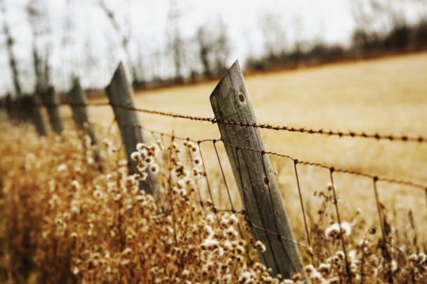 Are we thankful for the boundary limit to our property, responsibilities, and lifespan?