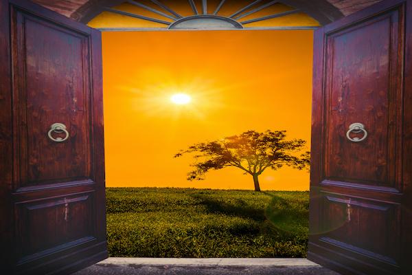 Looking through the door that Jesus has opened