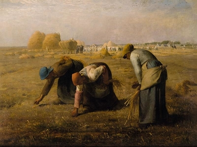 In Bible times, widows had to glean to find grain to eat