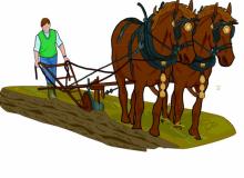 plowing & preparation