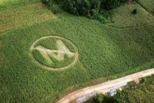 Saying No to metrics is like saying No to Monsanto